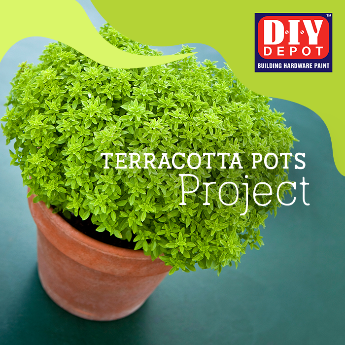 Terracotta Pots Project